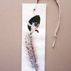 Butterfly iris and fountain grass pressed flower bookmark.