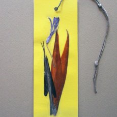 Bird of paradise - Nile lily pressed flower bookmark