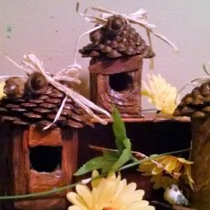 Pine cone Birdhouses - small - $10.00 - med- 15.00- large-20.00