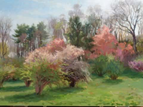 The Grove in Bloom