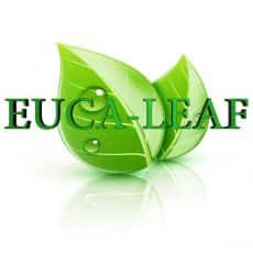 Euca-Leaf Soothing Pain Relief