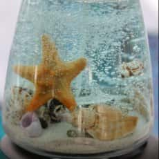 Dancing Starfish Candles