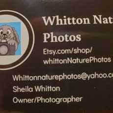 Whitton Nature Photos, Crafts and Jewelry