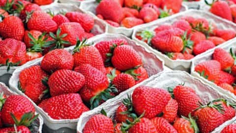 Strawberry Festival & Craft Fair