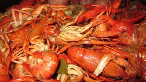 Leland Crawfish Festival