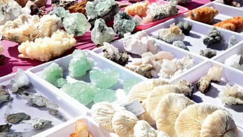 Gem, Mineral, Jewelry, and Fossil Show