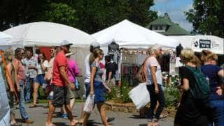 Ely's Blueberry Arts Festival