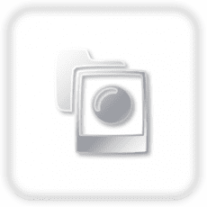 Smiling Grizzly
