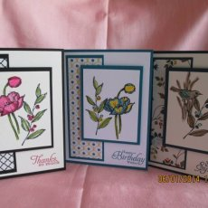 Boxed Set of 12 Everyday Greeting Cards