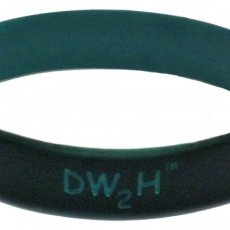 """DW2H"" (""Don't Wait to Hydrate"") ""Wristbands 2 Remember"" Collection"