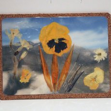 Yellow pansy and Bird of Paradise pressed flower laminated mouse pad, coaster, place mat