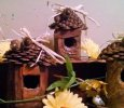 Pine cone Birdhouses - small - $15.00 - med- 18.00- large-25.00