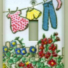 Laundry switchplate