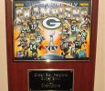 Beautiful Green Bay Packers Collectors Plaque.