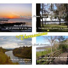 Thoreauisms - speaking for Nature