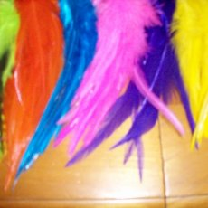 GRIZZLY ROOSTER FEATHER HAIR EXTENSIONS NEON COLORS