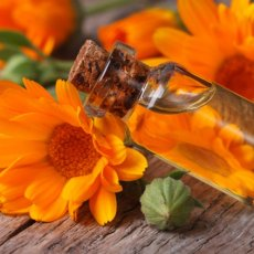Calendula Infused Oil ~ 20ml