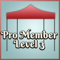 Level 3 Pro Member access