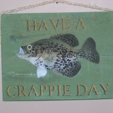 a crappie day