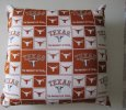 2 Texas long horns pillows sofa or travel 16x16