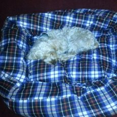 Universal Pet Bed Covers