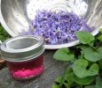 Flower Essence Jellies-Violet